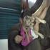 Picture 13 from swagman2 Cuddle time...