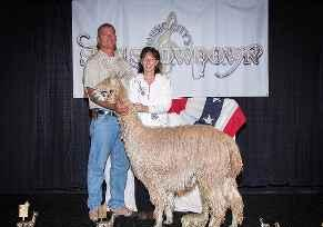 Profile picture for House Sitter AlpacaFarm