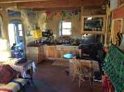 Profile Picture for Housesitter Required for House Sit AztecHousesit