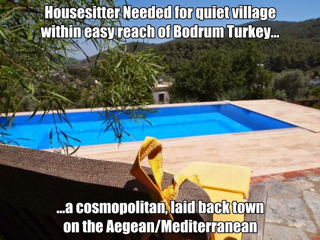 Housesitting Job in Turkey